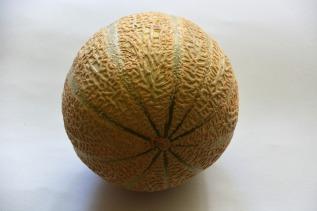 melon-2000898_640